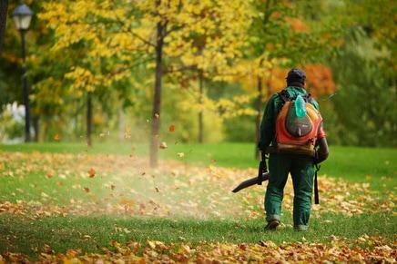 Minneapolis Lawn Blowing